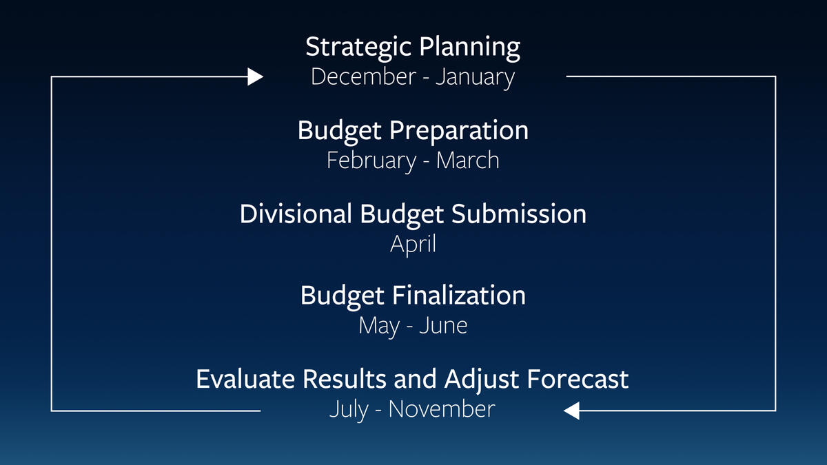 The phases of the budget process illustrated as a continuous cycle